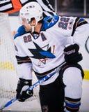 Dan Boyle, défenseur, San Jose Sharks Photographie stock libre de droits