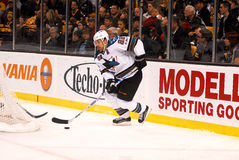 Dan Boyle San Jose Sharks Royalty Free Stock Image