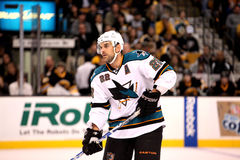 Dan Boyle San Jose Sharks Royalty Free Stock Images
