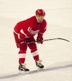 Dan Cleary dei Detroit Red Wings Fotografie Stock