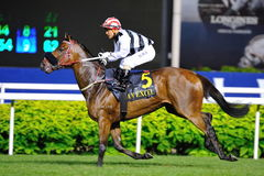 Dan Excel at Singapore Airlines International Cup 2013 Stock Photos