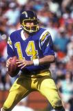 Dan Fouts San Diego Chargers Fotografie Stock