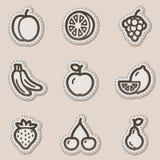 Dan fruto los iconos del Web, serie marrón de la etiqueta engomada del contorno Imagenes de archivo