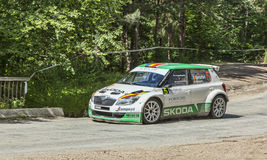 Dan Gîrtofan-  Eugen Rotaru- Transylvania Rally 2014 Royalty Free Stock Photo