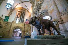 Dan hermoso de Yale University fotos de archivo