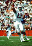 Dan Marino Miami Dolphins Stock Images