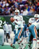 Dan Marino Miami Dolphins Royalty Free Stock Photos