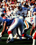 Dan Marino Miami Dolphins Stock Photography