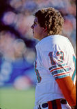 Dan Marino Quarterback of the Miami Dolphins. Dan Marino quarterback for the Miami Dolphins on the sidelines Royalty Free Stock Image