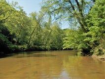 Dan River Calm Water Reflections Imagem de Stock