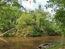 Dan River preguiçoso Fotografia de Stock