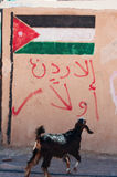 Dana Biosphere Reserve, Giordania, Medio Oriente Fotografia Stock Libera da Diritti
