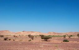 Dana Biosphere Reserve, Jordanië, Midden-Oosten Royalty-vrije Stock Foto's