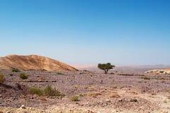 Dana Biosphere Reserve, Jordanië, Midden-Oosten royalty-vrije stock afbeelding