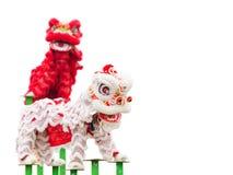 Dança chinesa do traje do leão Imagens de Stock