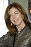 Dana Delany Royalty Free Stock Photography