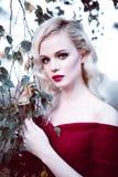 Dana den ursnygga unga blonda kvinnan i härlig röd klänning i en atmosfär för sagaskogmagi Retuscherat toningskott Royaltyfri Foto