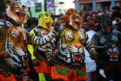 Dança do tigre Imagens de Stock