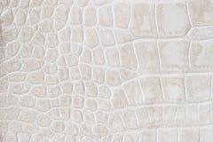 Dana exotisk bakgrund för den kräm- vågmakroen som utföra i relief under huden av en reptil, krokodilen Äktt läder för textur arkivfoto