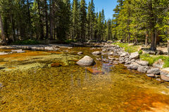 Dana Fork. The Tuolumne River originates in Yosemite National Park, high in the Sierra Nevada, as two streams. The 7-mile Lyell Fork rises at the Lyell Glacier Royalty Free Stock Photography