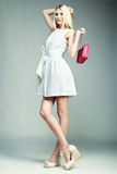 Dana fotoet av den unga storartade kvinnan Flicka med handväskan Arkivbild