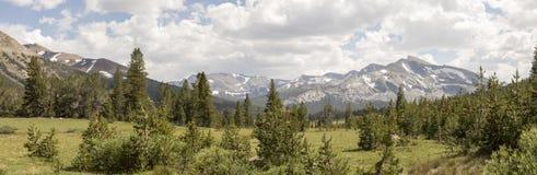 Dana Meadows, Yosemite Nationalpark stockfotos