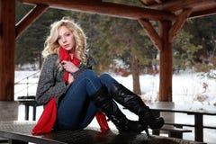 Dana modellerar i vinter Royaltyfri Foto