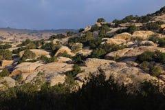 Dana Nature Fotografía de archivo libre de regalías