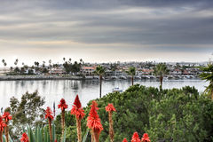 Dana point beach. An overview of dana point beach in california Royalty Free Stock Image
