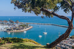 Dana Point Harbor Kalifornien Arkivbilder