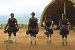 Dança tribal do tribo Zulu em África do Sul Fotografia de Stock