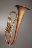 danad gammal trumpet Royaltyfria Foton