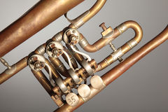 danad gammal trumpet Royaltyfri Bild