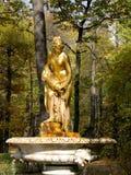Danaida金黄喷泉在Peterhof,在圣Piterburg附近 免版税库存照片