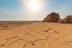 Danakil消沉,埃塞俄比亚,驴子Ale湖 免版税库存图片