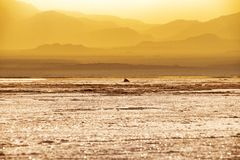 Sunset at Lake Assale, Ethiopia. The Danakil depression — specifically the area surrounding Lake Afdera — is the place from which close to 100% of the salt Stock Photo
