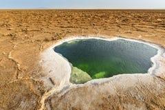 Danakildepressie, Ethiopië, Ezel Ale Lake stock foto