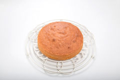 Danandesockerkakor, lagad mat kaka på den runda kyla kuggen Arkivbilder