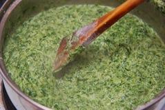 DanandespenatPesto eller sås i kastrull Hemlagad mat som förbereder sig Selektivt fokusera Arkivfoton
