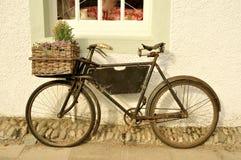 danat gammalt för cykel leverans royaltyfri fotografi