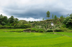danau indonesia norr sumatra toba Arkivfoton