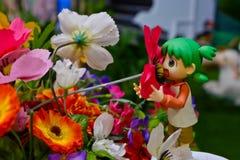 Danbo o danboard nel giardino Fotografia Stock