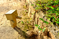 Danboard or Danbo Figure in the garden Stock Image