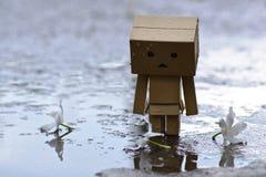 Danboard or Danbo Figure in the rain. Robot Box Walking in the Rain Stock Photo