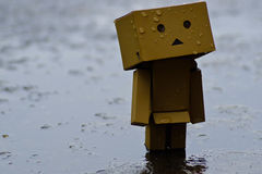 Danboard or Danbo Figure in the rain. Robot Box Walking in the Rain Royalty Free Stock Photo
