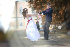 Dance bride and groom Stock Images