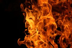 Dance of the camp fire. Pictures of the dance of the flames in camp fire royalty free stock photos