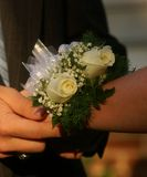 Dance corsage. Couple putting a corsage on a wrist before a dance Stock Photography