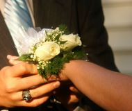 Dance Corsage on Wrist. Couple putting a corsage on a wrist before a dance Stock Photo