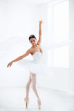 Dance. Dancing ballerina in the studio royalty free stock images